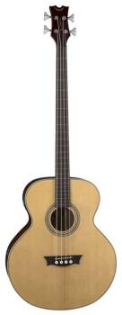 Acoustic/Electric Bass Fretless - GN (DE-EAB-FL)